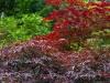 colors3-6507